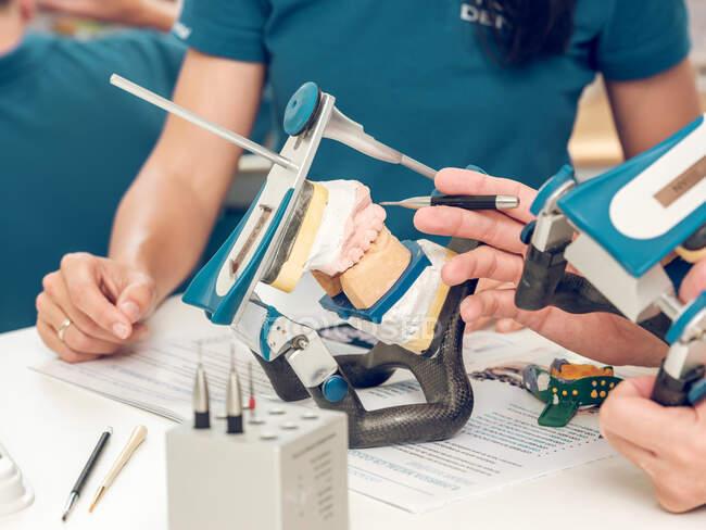 Técnicos dentales irreconocibles de cultivos que trabajan en el molde de mandíbula en el laboratorio - foto de stock