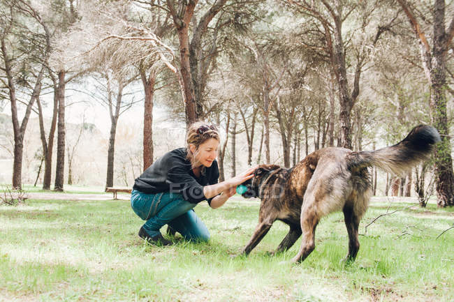 Big brown dog and owner playing in forest with ball — Stock Photo