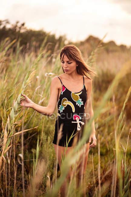 Schlanke Frau tragen Shorts und Top und steht im Hochfeld-Rasen und stengel zärtlich berühren — Stockfoto
