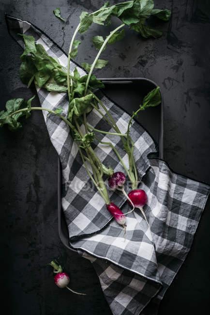Karierte Tuch und Reife rote Radieschen mit Stielen auf schwarzen Tablett — Stockfoto