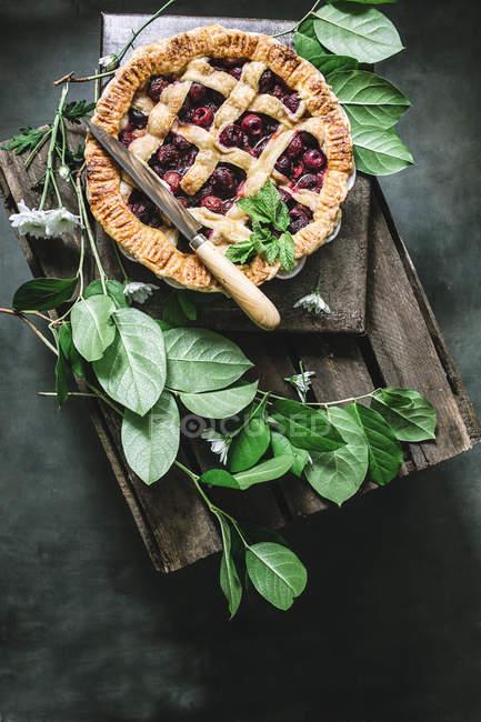 Piatto posare di torta di ciliegie al forno con crosta della grata servita sulla scatola di legno tra le foglie verdi — Foto stock