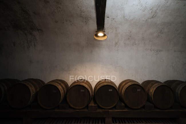 Делікатний стильний винний склеп, повний темних дерев'яних полиць зі світлом, що сяє згори. — стокове фото