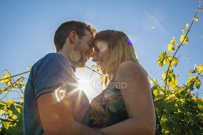 Vue d'en bas du jeune homme et de la jeune femme embrassant et touchant les fronts à l'extérieur contre le feuillage vert et dans le dos éclairé — Photo de stock