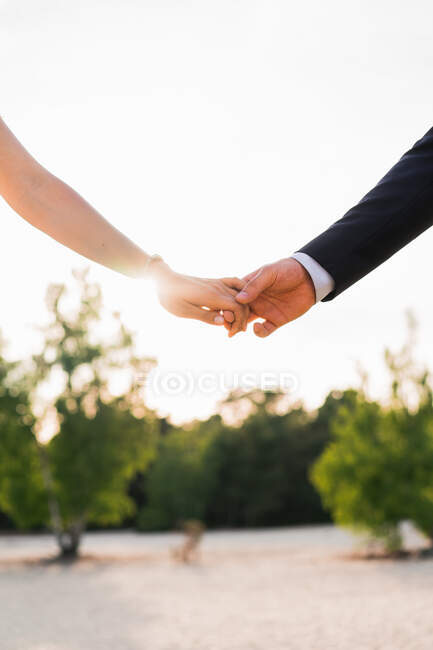 Crop shot of man and woman holding hands tenderly against green trees in bright sunshine — Stock Photo