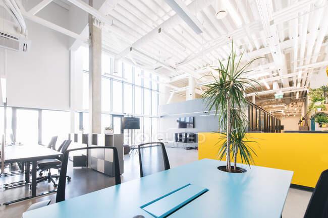 Vue intérieure du nouveau bureau élégant à espace ouvert avec un design contemporain et un haut plafond à la lumière du jour — Photo de stock