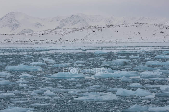 Ice floating in water and snow covered mountains on background, Svalbard, Norway — Stock Photo