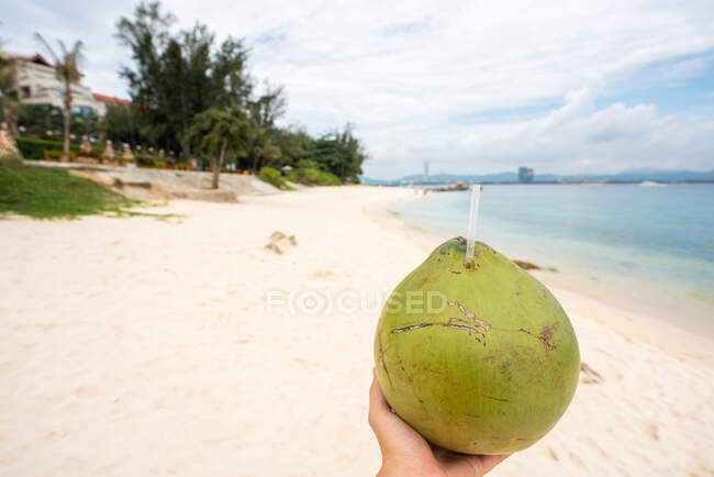 Crop person holding green coconut with drink and straw on tropical sandy seaside of Wuzhizhou Island, China — Stock Photo