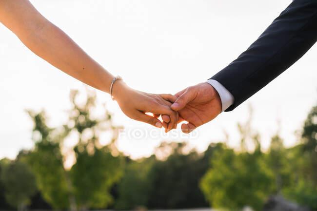 Colpo di raccolto di uomo e donna tenendosi per mano teneramente contro alberi verdi in pieno sole — Foto stock