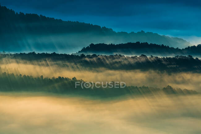 Breathtaking view of heavy rain over fog and forest in evening. — Stock Photo