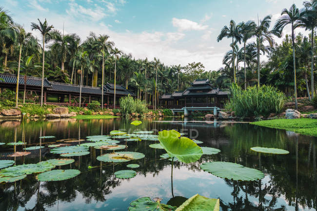 Pond in park with water lily pads and oriental building on background, Nanning, China — Stock Photo