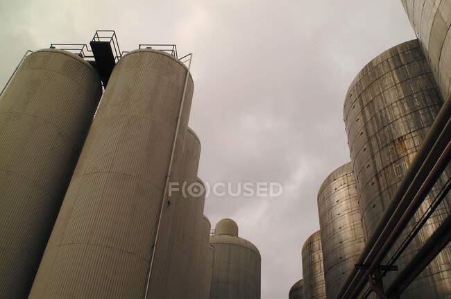 Високі резервуари для пива. — стокове фото