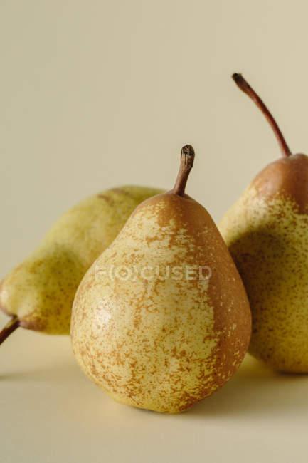 Três peras suculentas maduras em fundo cinza — Fotografia de Stock
