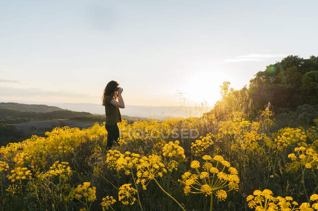 Woman taking pictures on mountain with yellow flowers — Stock Photo