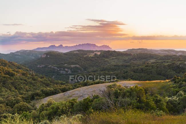 Magnifica vista della cresta montuosa a distanza e belle piste con alberi e valli con erba verde girato al tramonto a El Montcau a Barcellona, Spagna — Foto stock