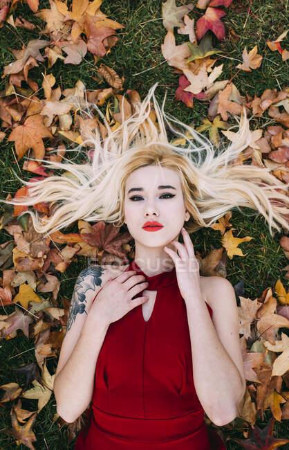 Сверху блондинка с татуированной рукой, лежащей на зеленой траве в листве и смотрящей в камеру.. — стоковое фото