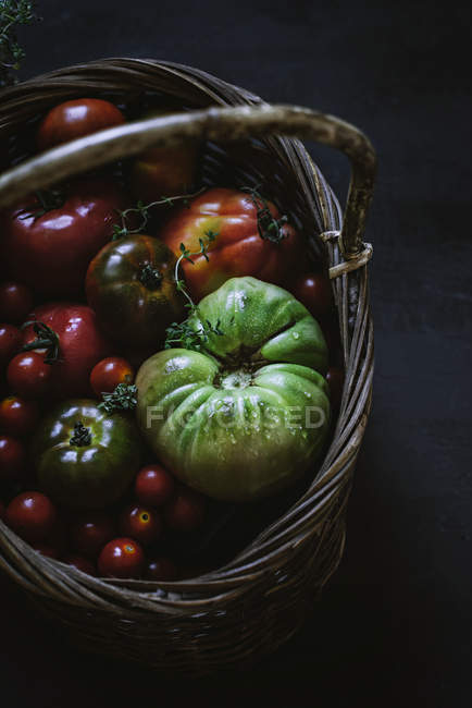 Fresh picked tomatoes in basket on grey background — Stock Photo