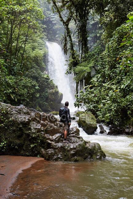 Позаду людини з рюкзаком, що стоїть на мокрому валуні і дивиться на дивовижний водоспад у джунглях Коста - Рики. — стокове фото