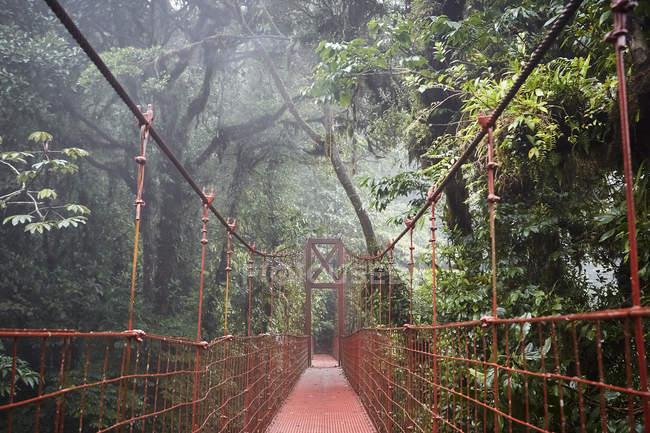 Pont suspendu rouge traversant une magnifique forêt tropicale au Costa Rica, Amérique centrale — Photo de stock