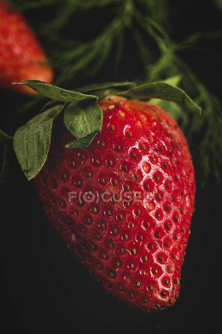 Close-up of textured delicious strawberry on black background — Stock Photo