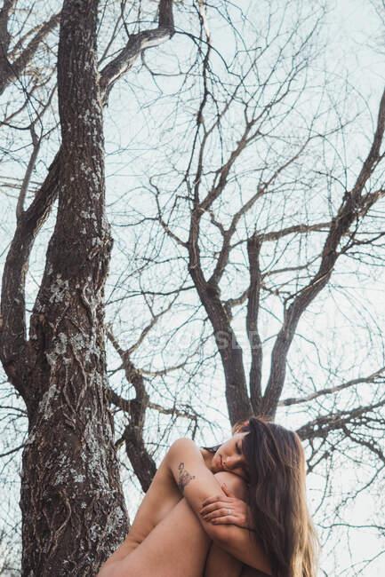 Женщина сидит на дереве с закрытыми глазами — стоковое фото