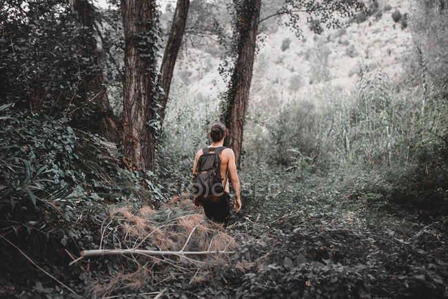 Back view of young shirtless man with backpack going through forest with lush bushes and trees — Stock Photo