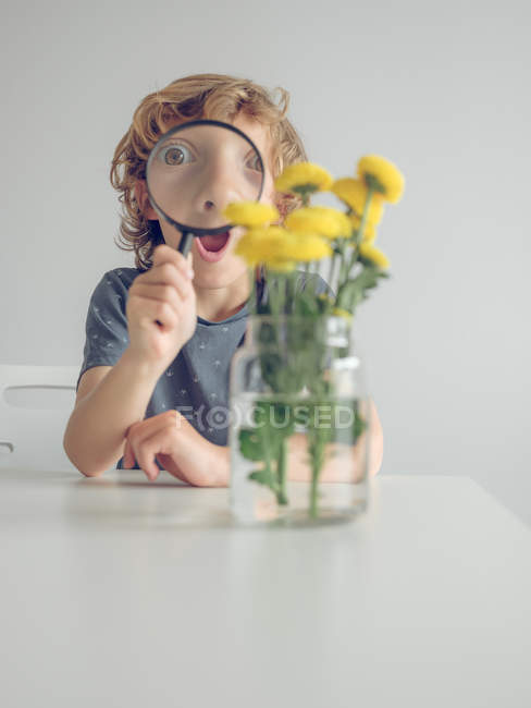 Boy with magnifying glass looking at dandelions — Stock Photo