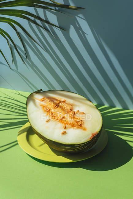 Folhas de melão metade no prato sobre fundo azul e verde com sombras da palma — Fotografia de Stock