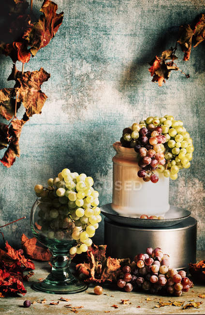 Purple and green grapes with dry autumn leaves on rustic background — Stock Photo