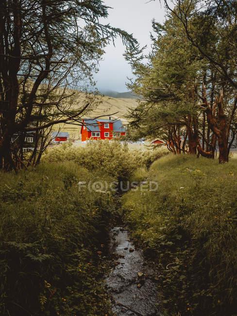 Casas rurais de vermelhas na aldeia com a floresta e o pequeno rio nas Ilhas Feroe — Fotografia de Stock