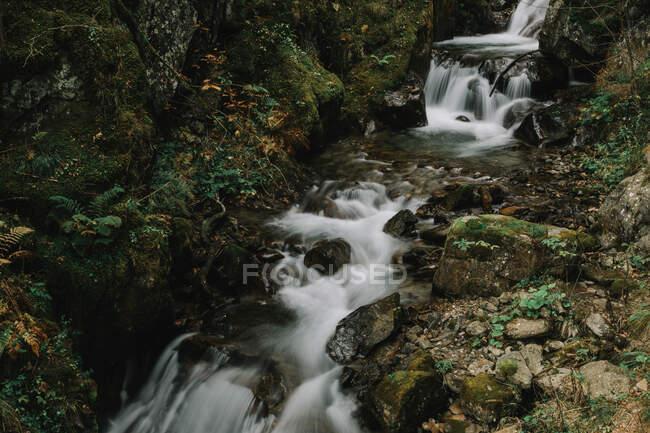 Increíble cascada en acantilados - foto de stock