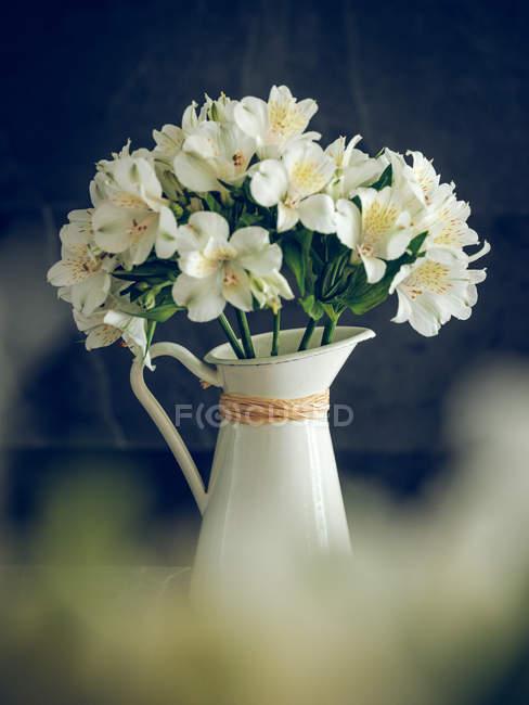Кувшин белого цветущего букета на темном фоне — стоковое фото