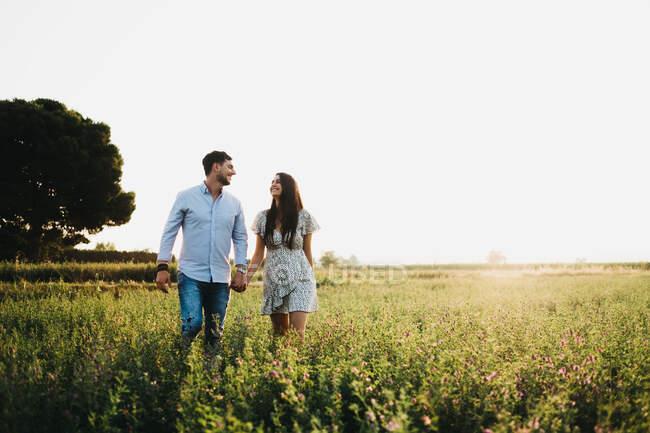 Allegro giovane uomo e donna che si tengono per mano e camminano sul campo alla luce del sole — Foto stock