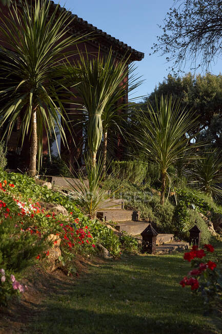 Stone building with stairs standing in garden with green palms and flowers on background of blue cloudless sky — Stock Photo
