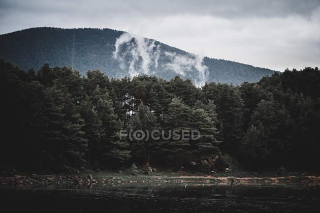 Красивый вид на лес и озеро в красивых горах Андорры — стоковое фото