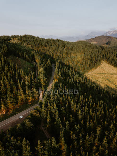 Асфальтированная сельская дорога в горах — стоковое фото