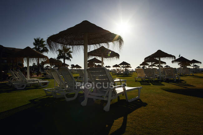 Sedie a sdraio bianche in piedi sotto ombrelloni di paglia sul prato verde nella giornata di sole sullo sfondo del cielo blu senza nuvole — Foto stock