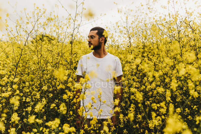Handsome man in white T-shirt looking away while standing among beautiful yellow flowers — Stock Photo