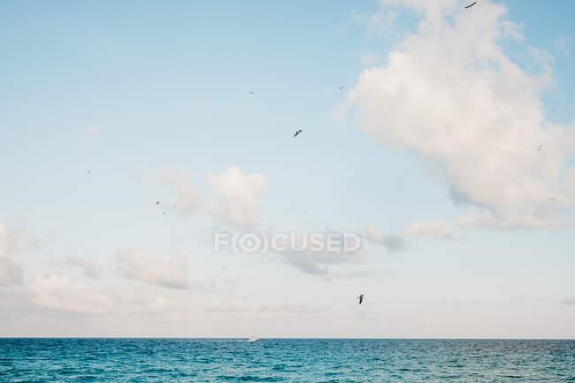 Хмари над морем — стокове фото
