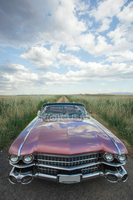 Classic old car in field — Stock Photo