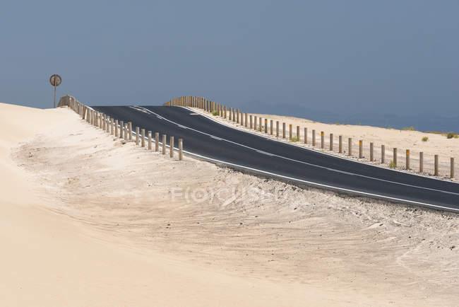Road and barren vegetation in Fuerteventura desert, Canary Islands — Foto stock