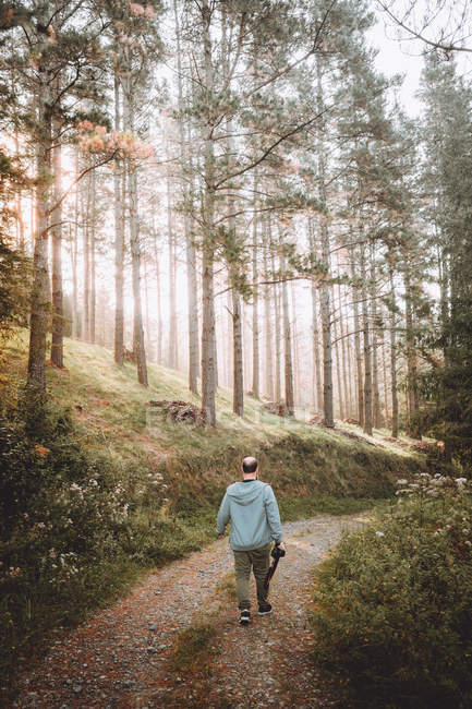 Photographer walking on path in green forest — Stock Photo