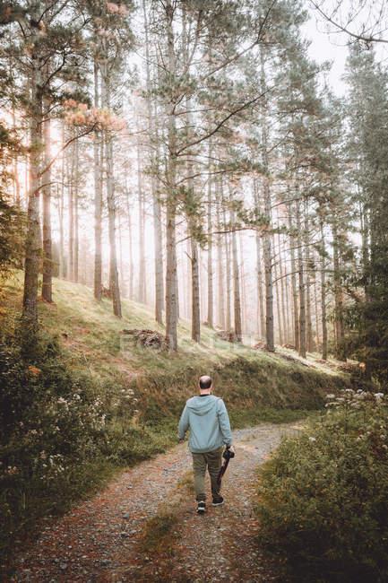 Fotografo che cammina sul sentiero nel verde della foresta — Foto stock