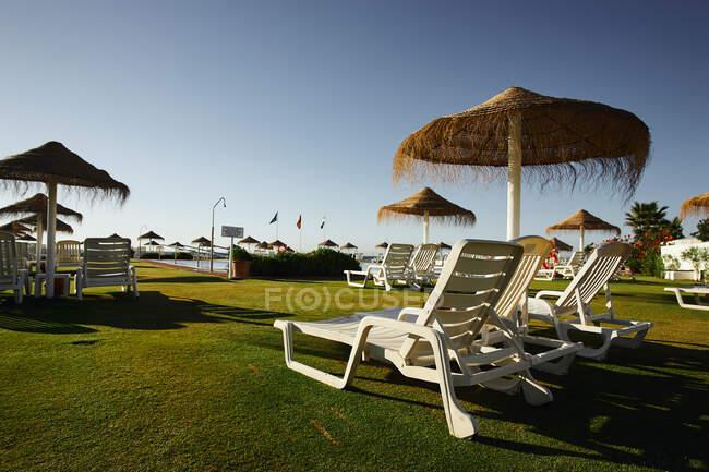 Sedie a sdraio sotto ombrelloni di paglia — Foto stock