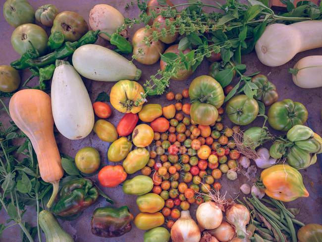 Свежие овощи на деревенском столе — стоковое фото