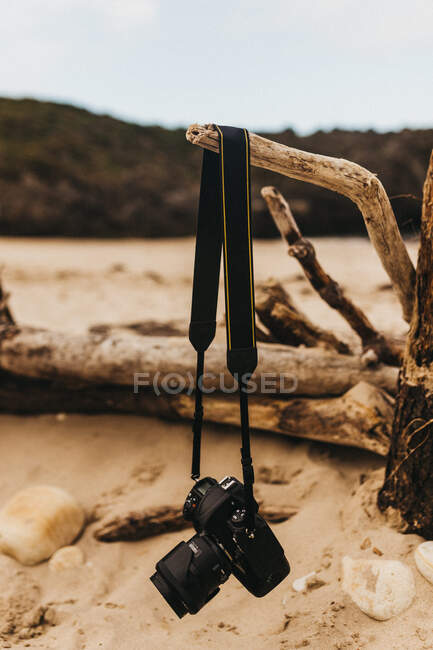 Professional photo camera hanging on dry branch on blurred background of sandy shore — Stockfoto