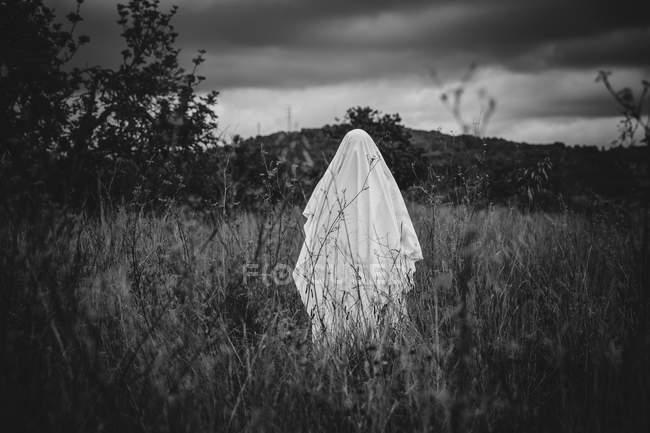 Personne déguisé en fantôme, marcher dans la nature — Photo de stock