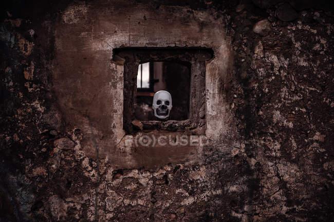 Calavera en la ventana en la vieja pared de mala calidad - foto de stock