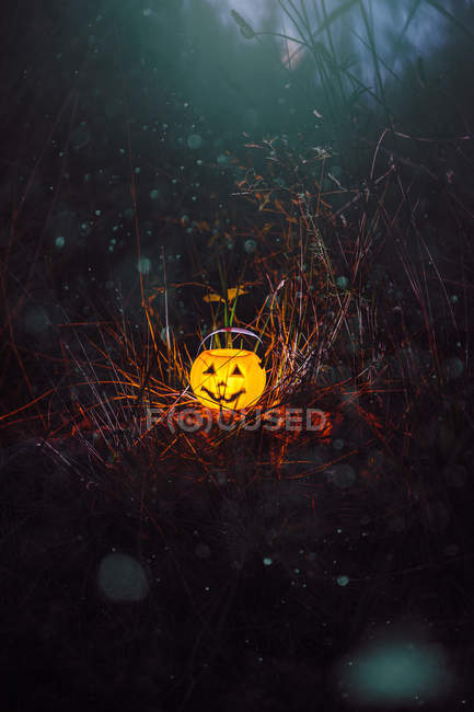 Lighting Halloween pumpkin in dark forest — Stock Photo