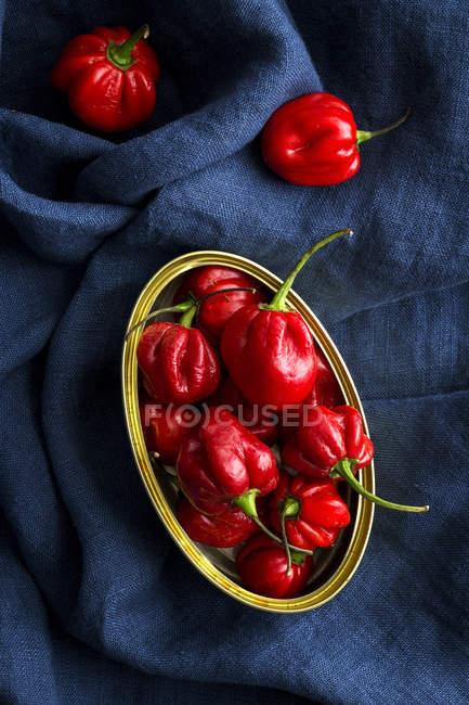 Банка с красным перцем на темно-синей ткани — стоковое фото