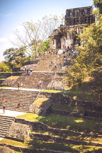 Vista de la increíble pirámide maya ubicada en la ciudad de Palenque en Chiapas, México - foto de stock